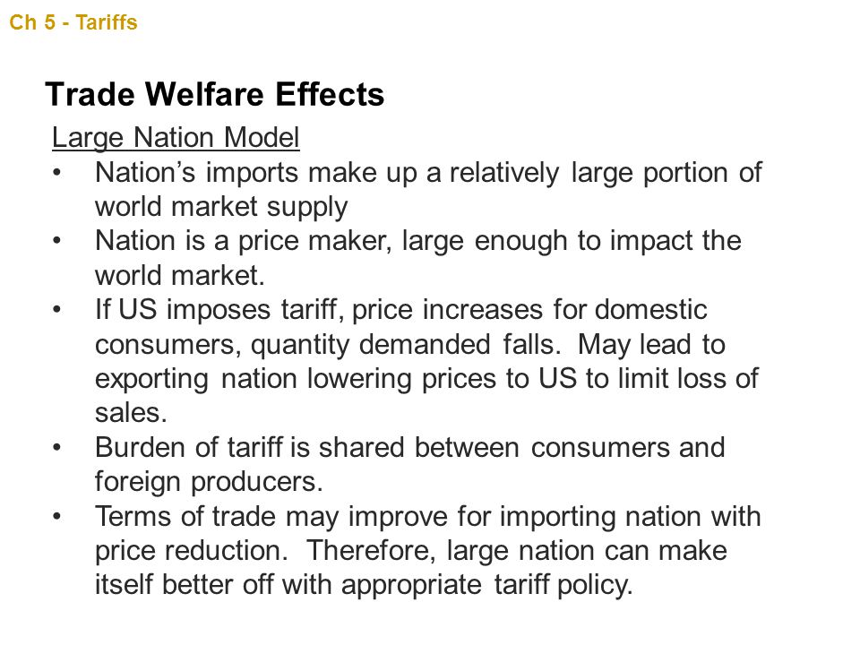 Trade Welfare Effects Large Nation Model