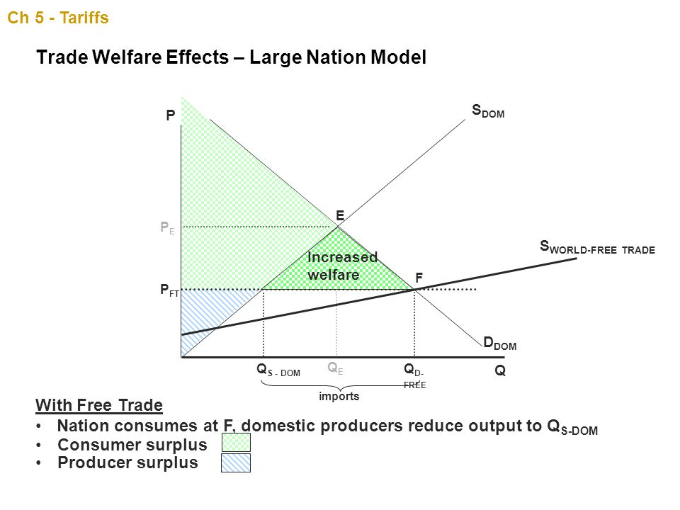 Trade Welfare Effects – Large Nation Model