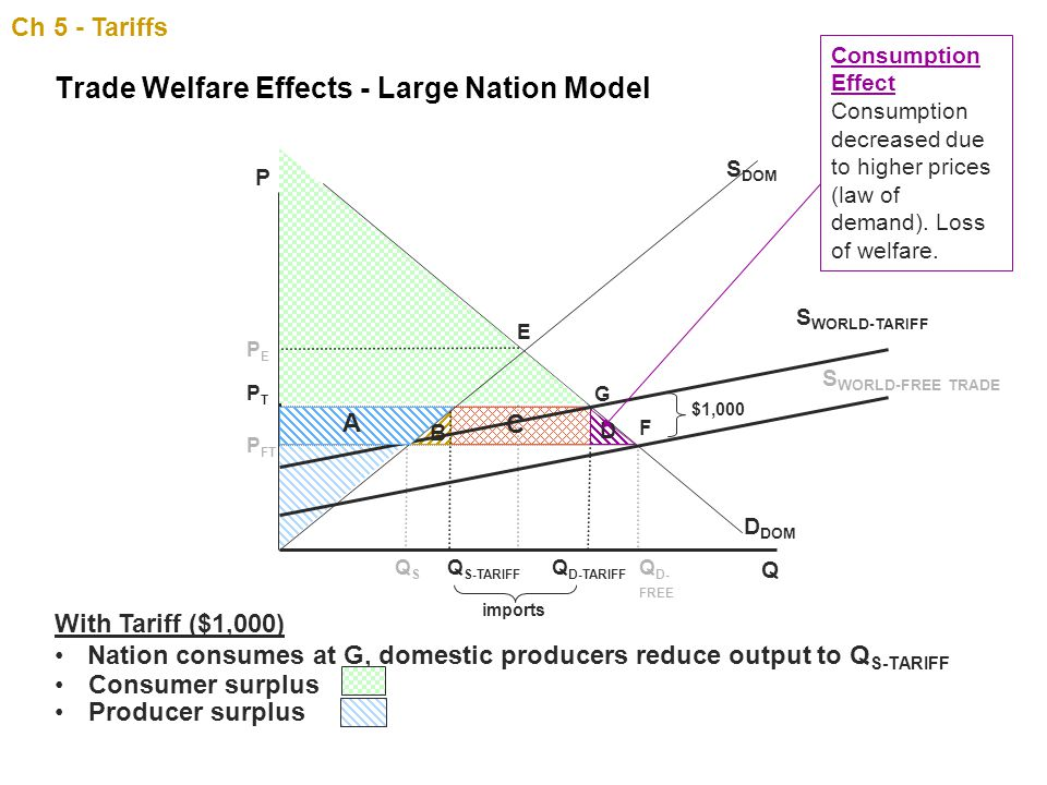 Trade Welfare Effects - Large Nation Model