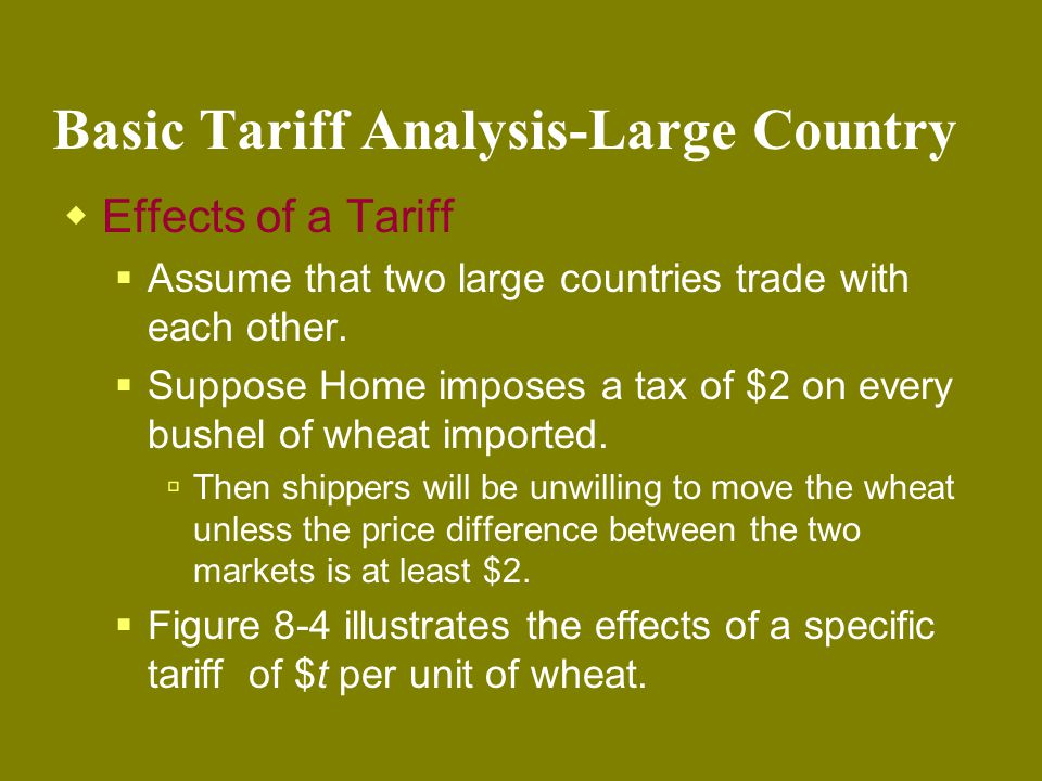Basic Tariff Analysis-Large Country