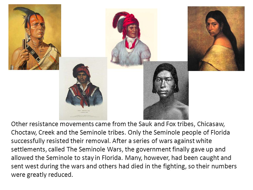 Other resistance movements came from the Sauk and Fox tribes, Chicasaw, Choctaw, Creek and the Seminole tribes.
