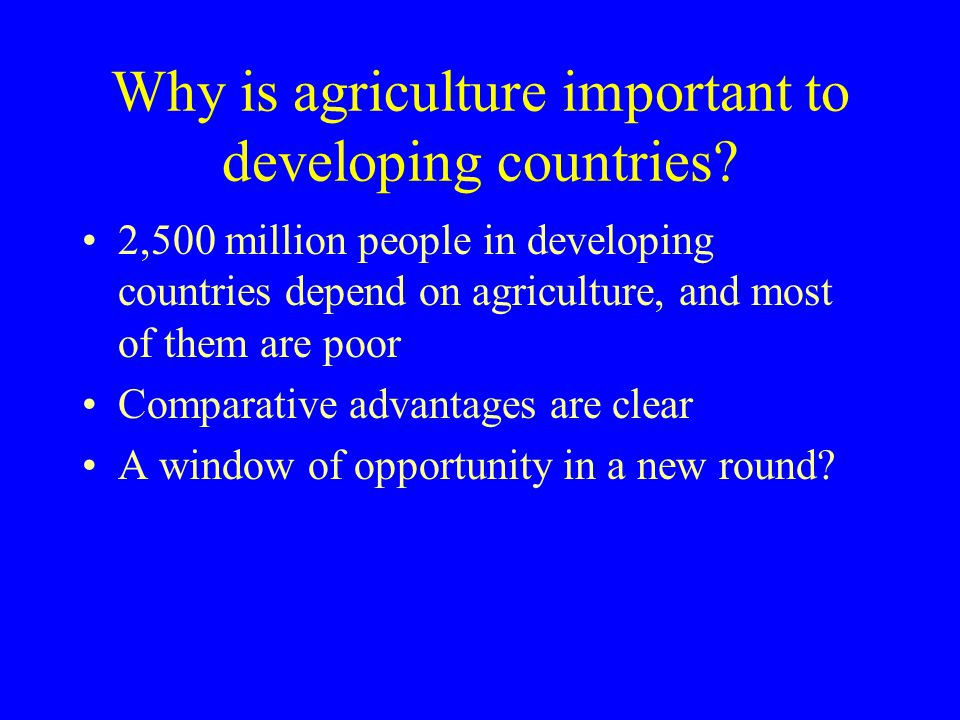 Why is agriculture important to developing countries