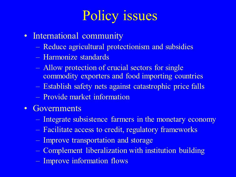Policy issues International community Governments