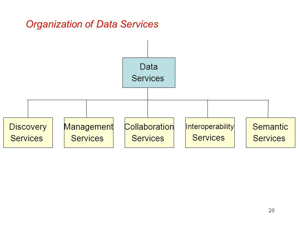 Organization of Data Services