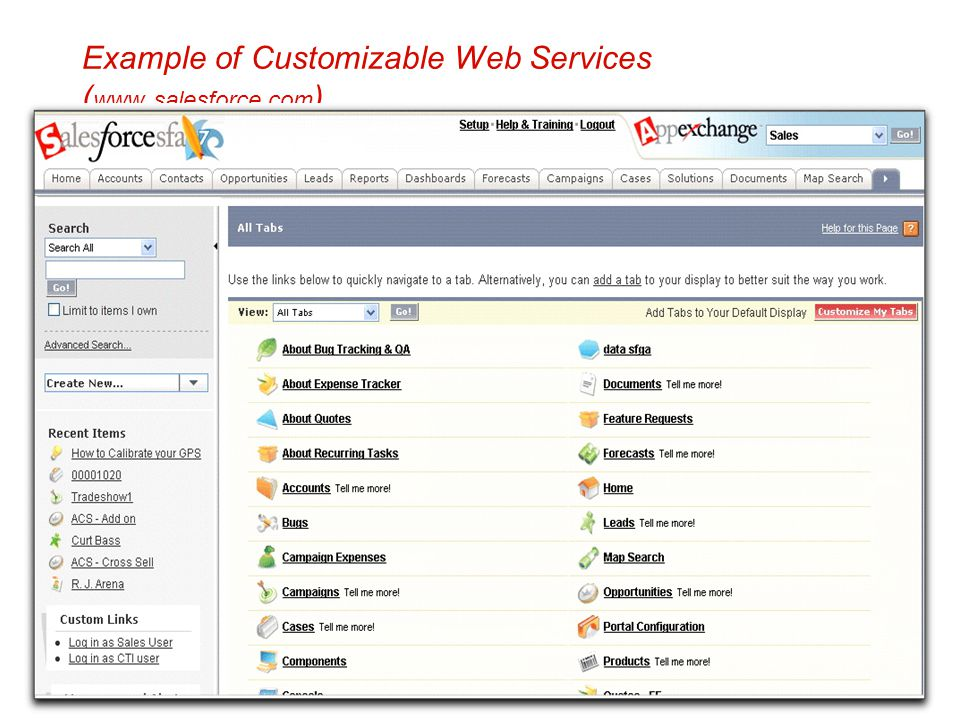 Example of Customizable Web Services (www.salesforce.com)