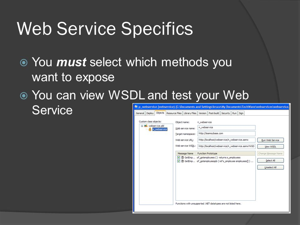 Web Service Specifics You must select which methods you want to expose