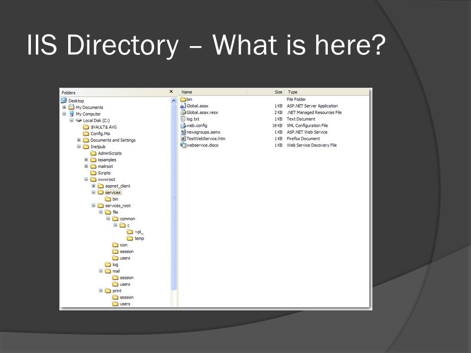 IIS Directory – What is here