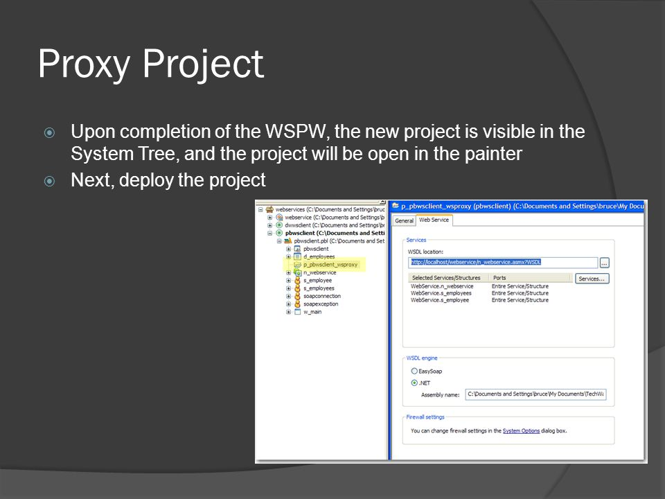 Proxy Project Upon completion of the WSPW, the new project is visible in the System Tree, and the project will be open in the painter.