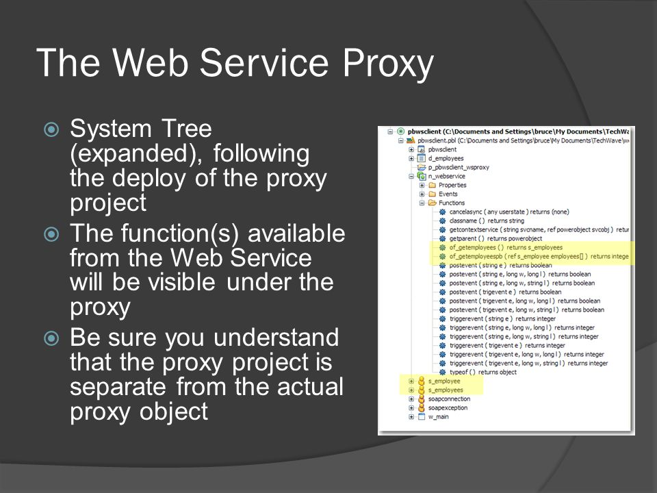 The Web Service Proxy System Tree (expanded), following the deploy of the proxy project.