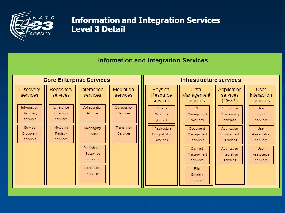 Information and Integration Services Level 3 Detail