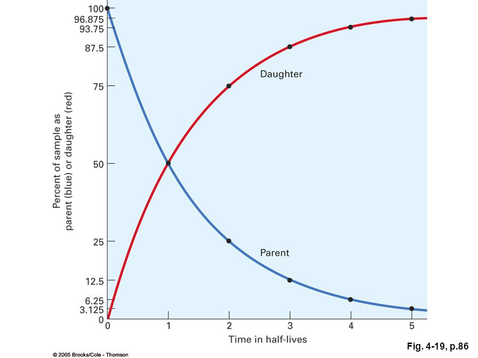 Figure 4.19 As a radioactive parent isotope decays to a daughter, the proportion of parent decreases (blue line) and the amount of daughter increases (red line). The half-life is the amount of time required for half of the parent to decay to daughter. At time zero, when the radiometric calendar starts, a sample is 100 percent parent. At the end of one half-life, 50 percent of the parent has converted to daughter. At the end of two half-lives, 25 percent of the sample is parent and 75 percent is daughter. Thus, by measuring the proportions of parent and daughter in a rock, the rock's age in half-lives can be obtained. Because the half-lives of all radioactive isotopes are well known, it is simple to convert age in half-lives to age in years.