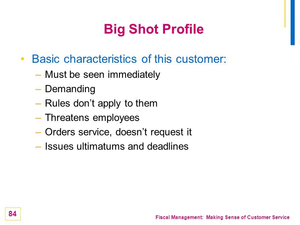 Big Shot Profile Basic characteristics of this customer: