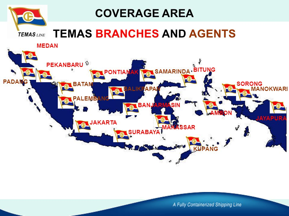 TEMAS BRANCHES AND AGENTS