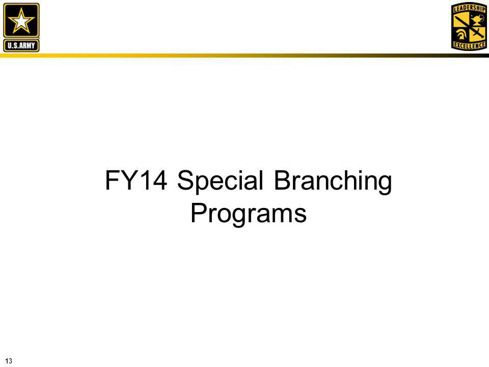 FY14 Special Branching Programs