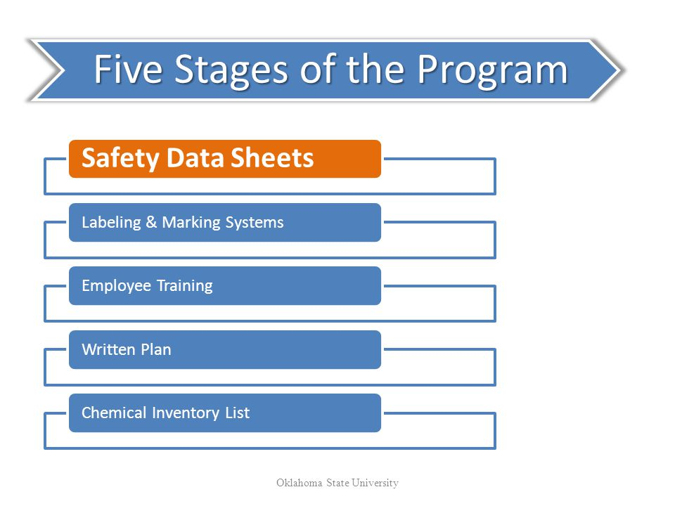 Five Stages of the Program
