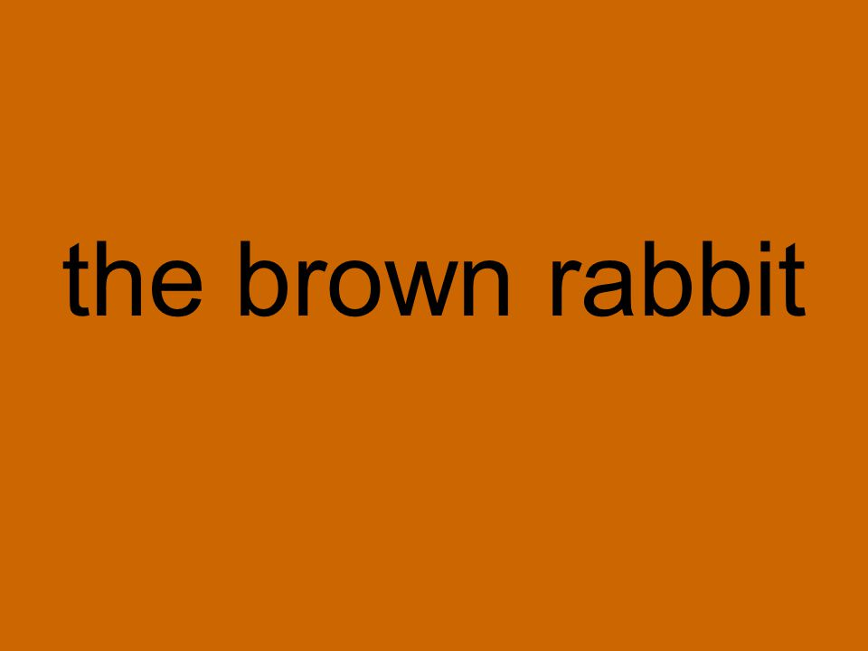 the brown rabbit