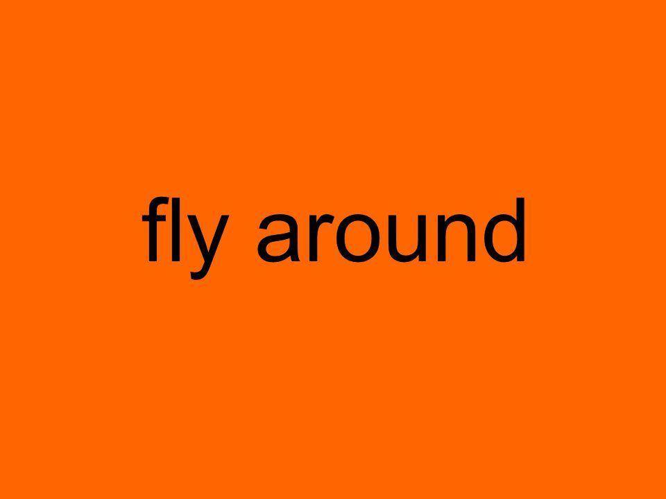 fly around