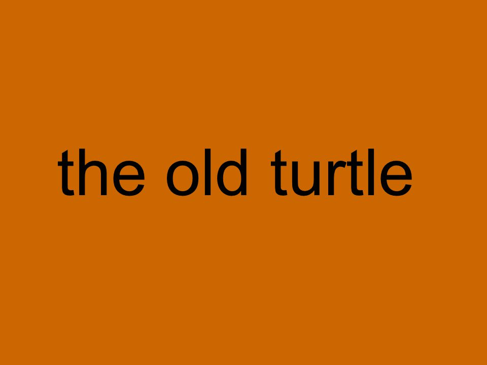 the old turtle