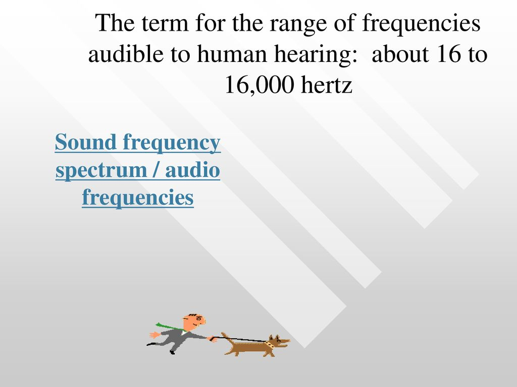 Audio Review Most of the Final Exam will be focused on