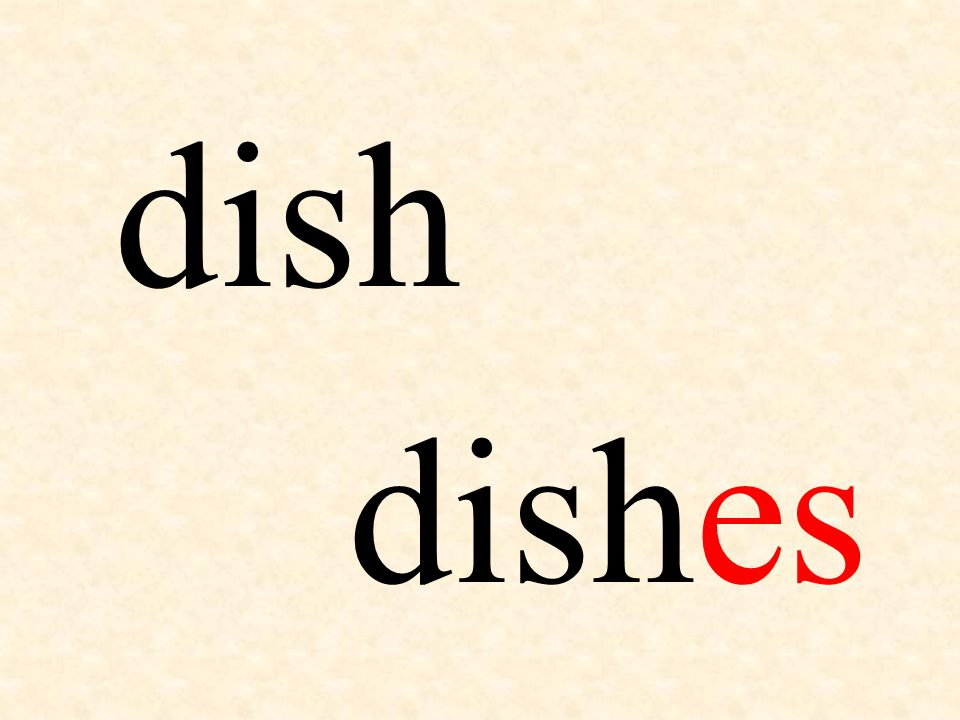 dish dishes