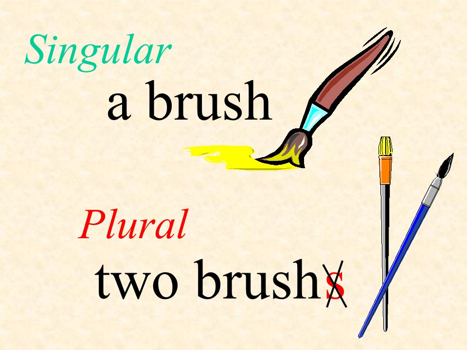 Singular a brush Plural two brush s