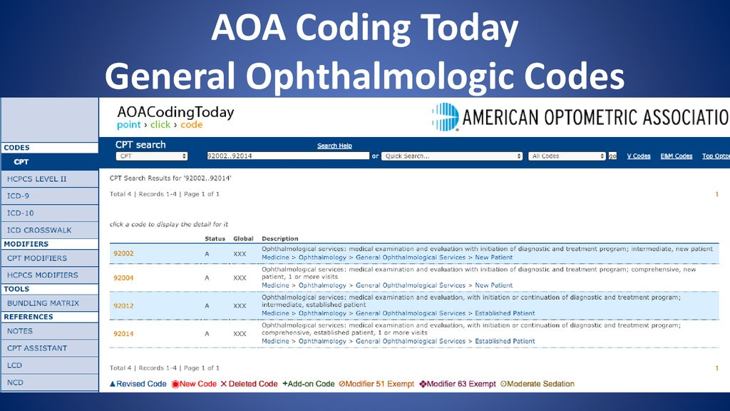 Ask The AOA Coding Experts Top Questions Harvey Richman O