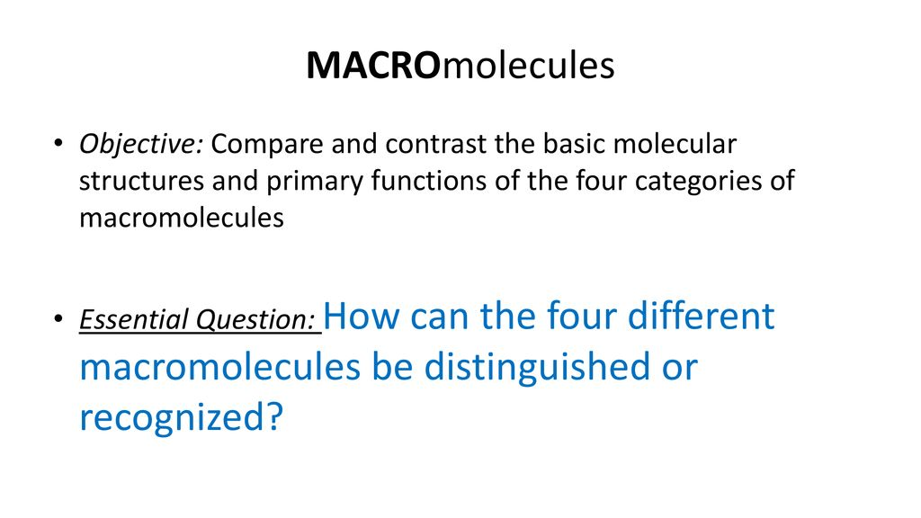 Printables of Macromolecules Worksheet Quizlet - Geotwitter Kids ...