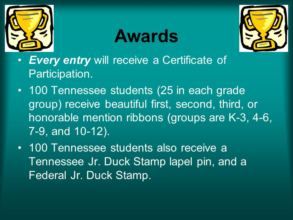 Awards Every entry will receive a Certificate of Participation.