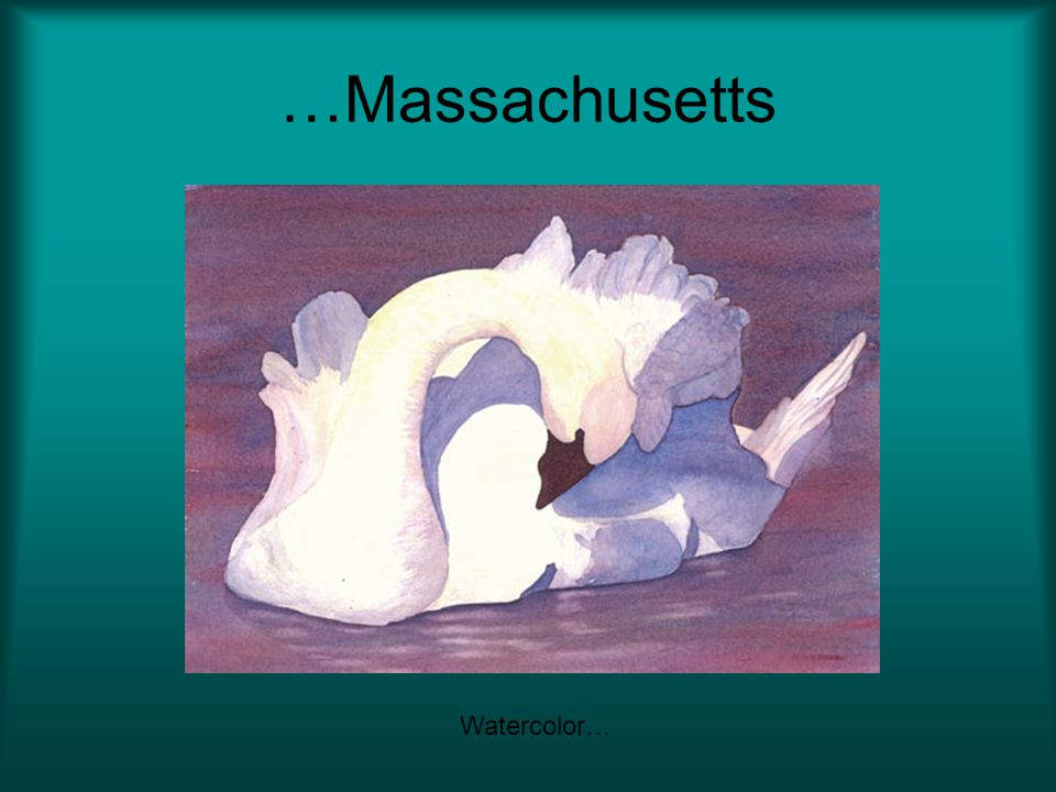 …Massachusetts Watercolor…