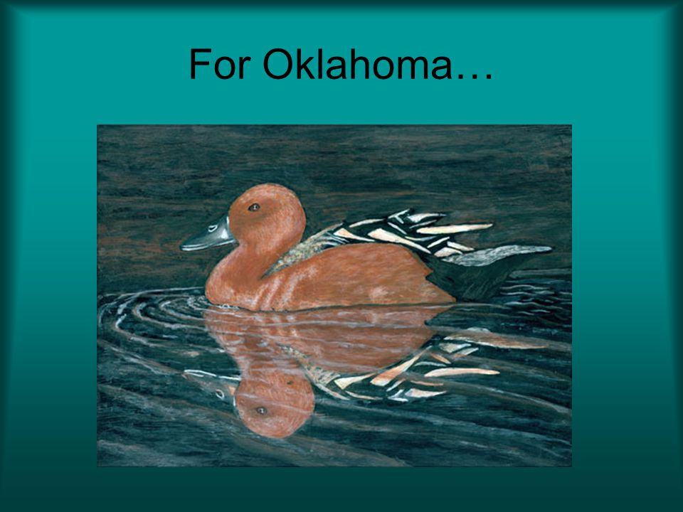 For Oklahoma…