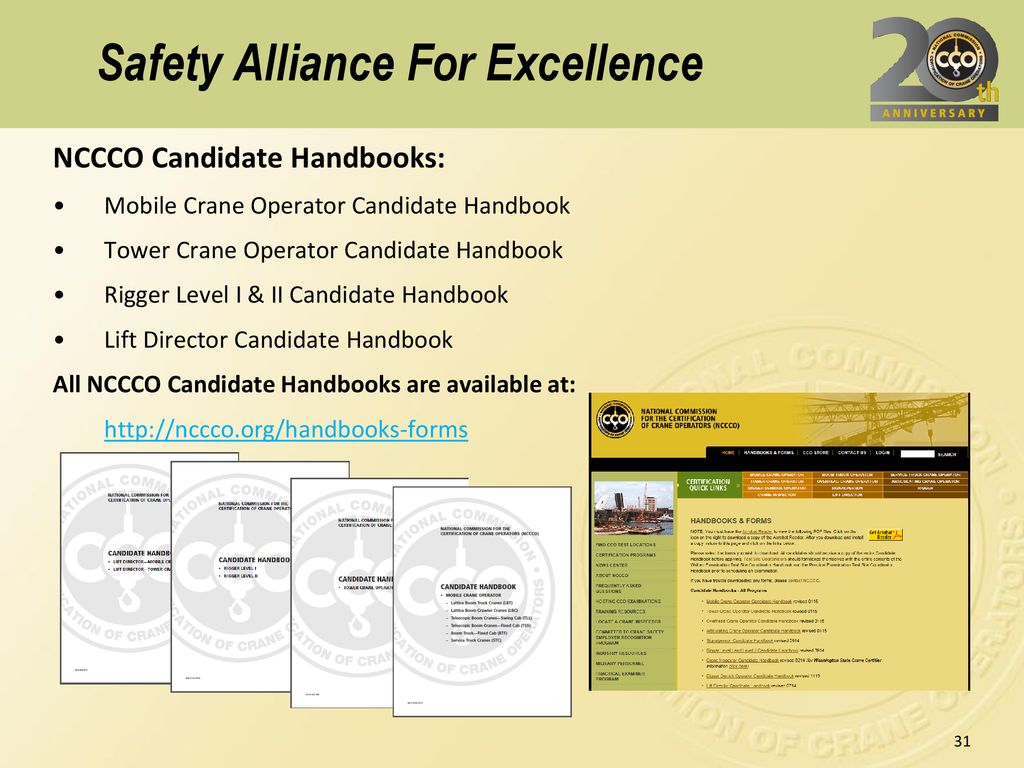 Safety Alliance for Excellence - ppt download
