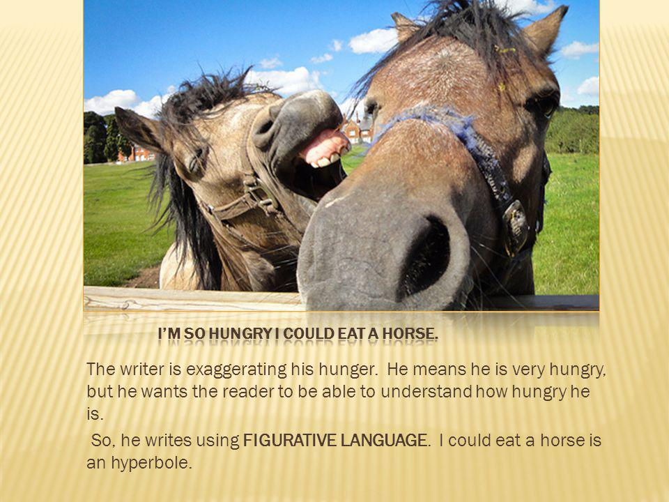 I'm so hungry I could eat a horse.