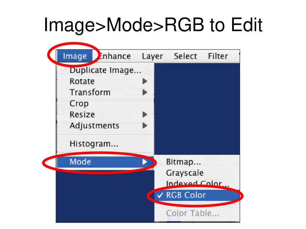 Adobe Photoshop Elements 2 0 Creating Buttons For Websites - ppt
