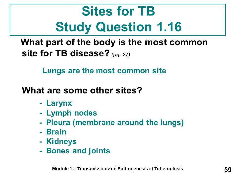 Sites for TB Study Question 1.16