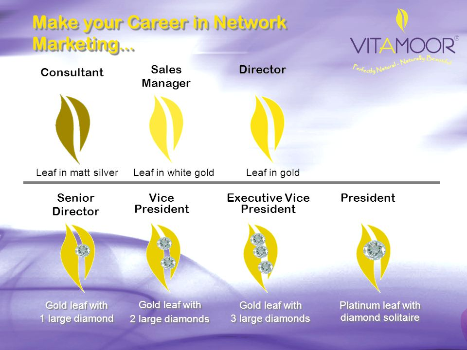 Make your Career in Network Marketing…