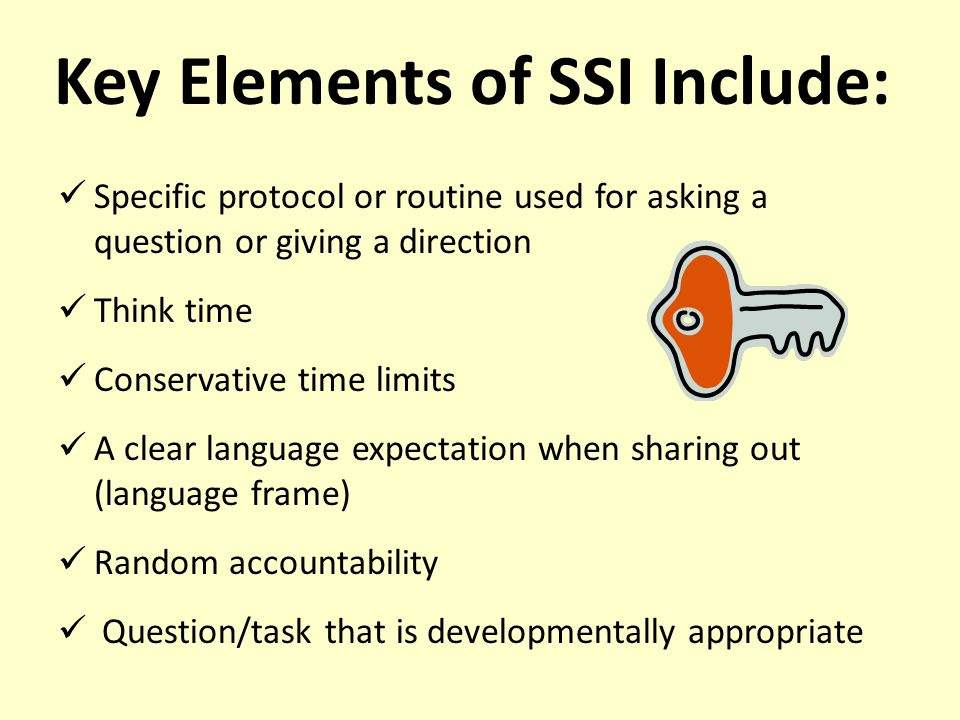 Key Elements of SSI Include:
