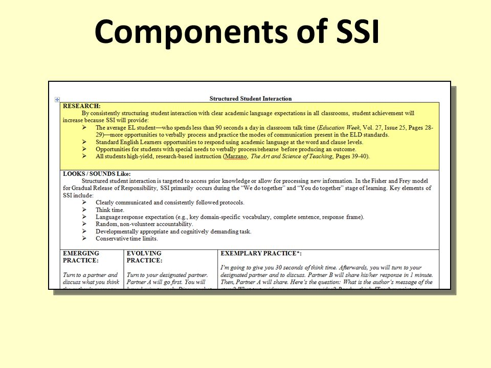 Components of SSI Add Kathy's information