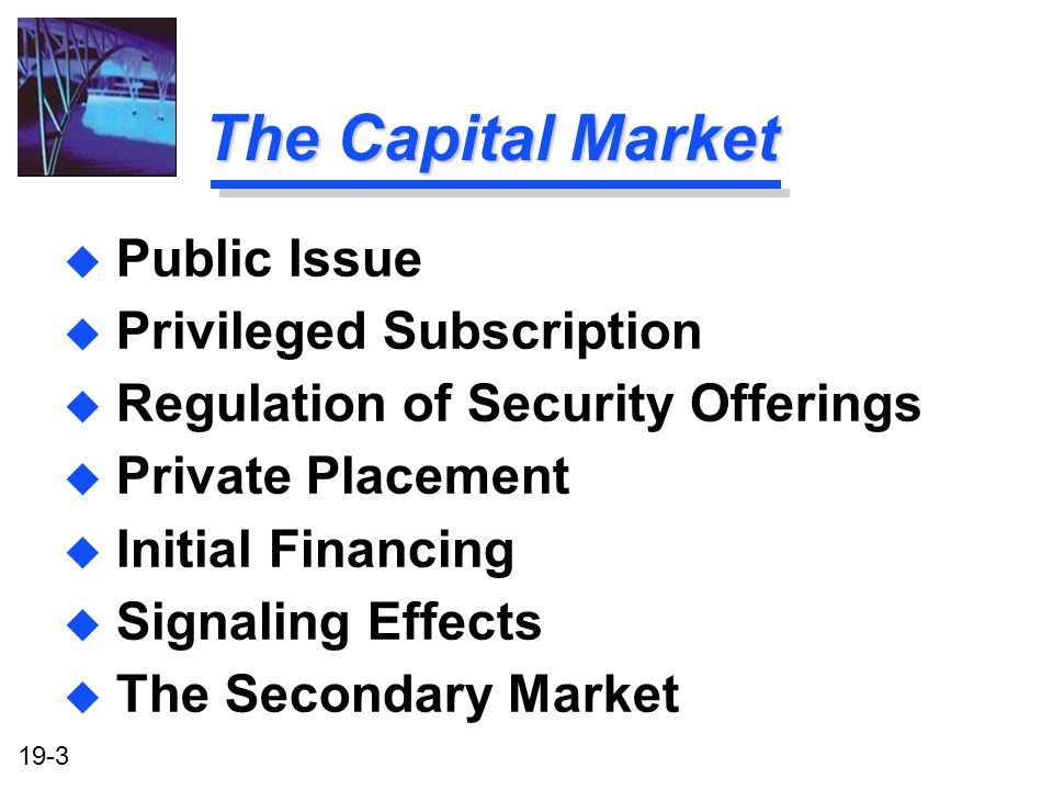The Capital Market Public Issue Privileged Subscription