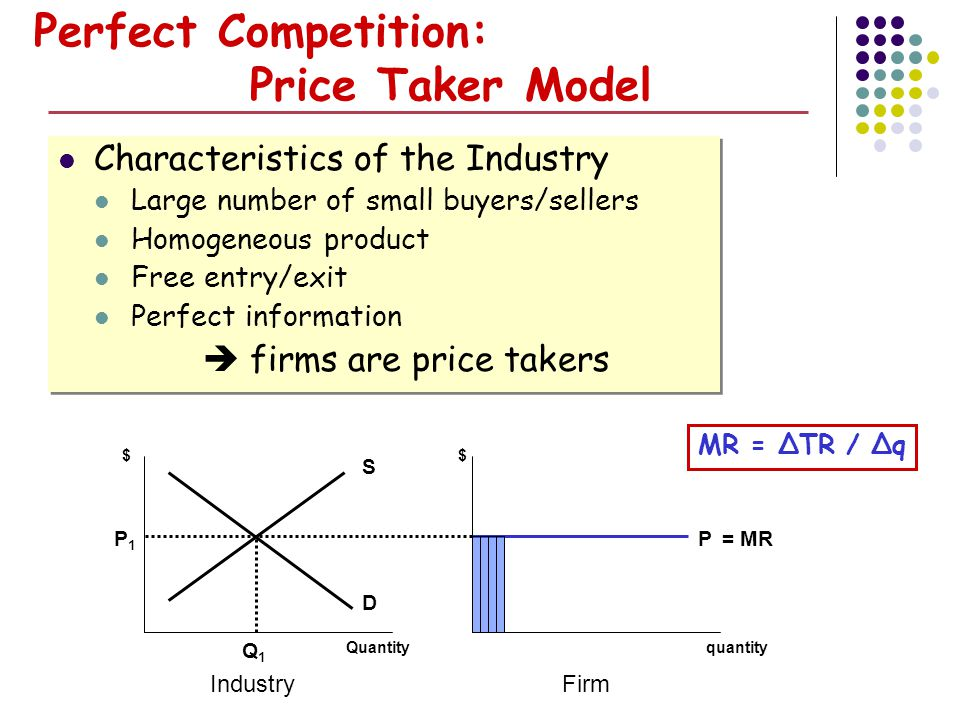 Perfect Competition: Price Taker Model