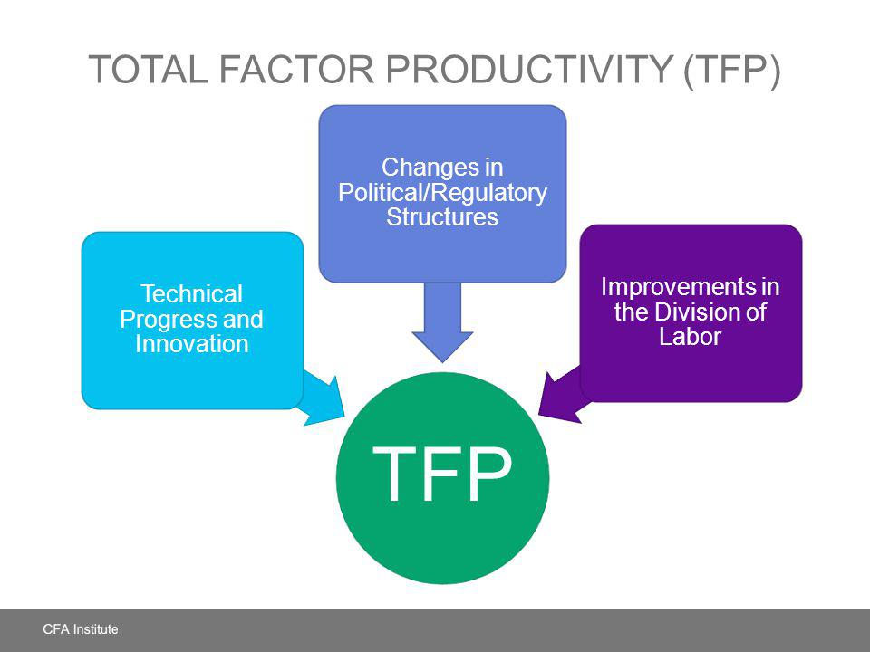 Total Factor Productivity (TFP)