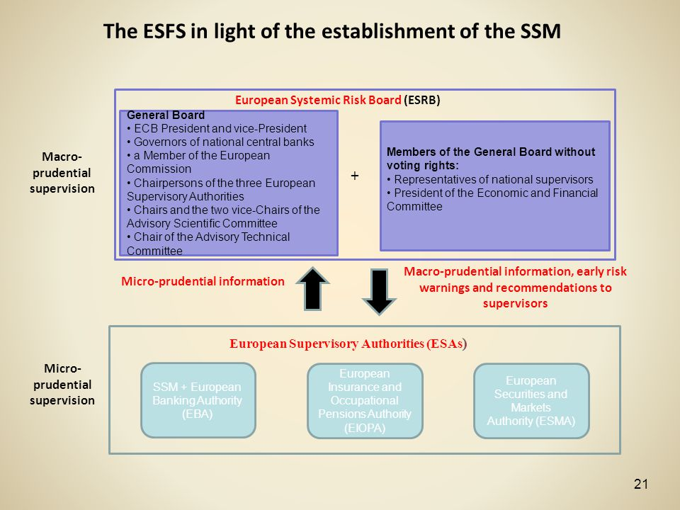 The ESFS in light of the establishment of the SSM