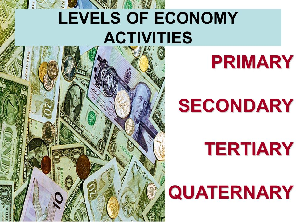 LEVELS OF ECONOMY ACTIVITIES