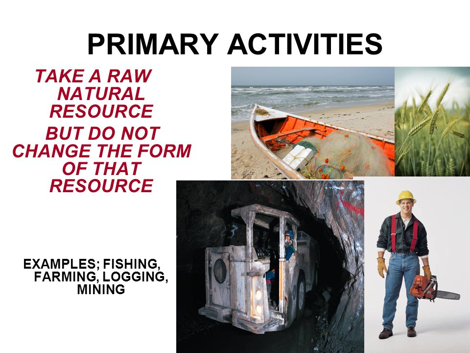 PRIMARY ACTIVITIES TAKE A RAW NATURAL RESOURCE