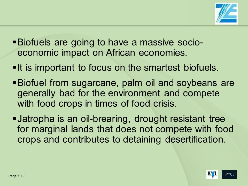 Biofuels are going to have a massive socio-economic impact on African economies.