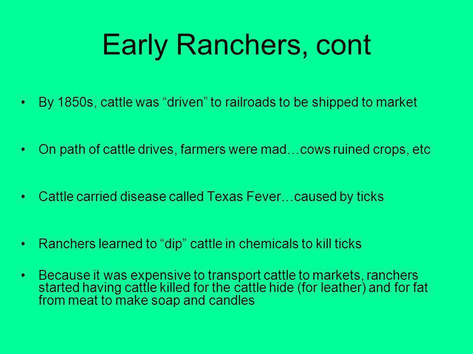 Early Ranchers, cont By 1850s, cattle was driven to railroads to be shipped to market.