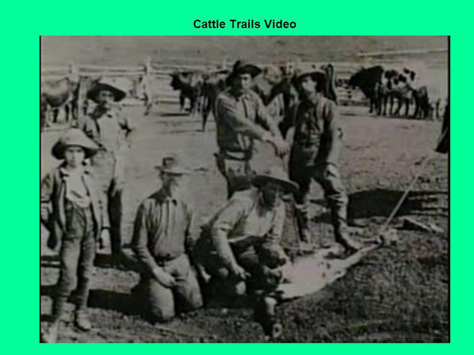 Cattle Trails Video