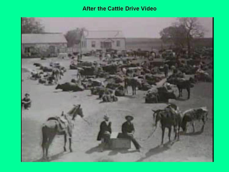 After the Cattle Drive Video