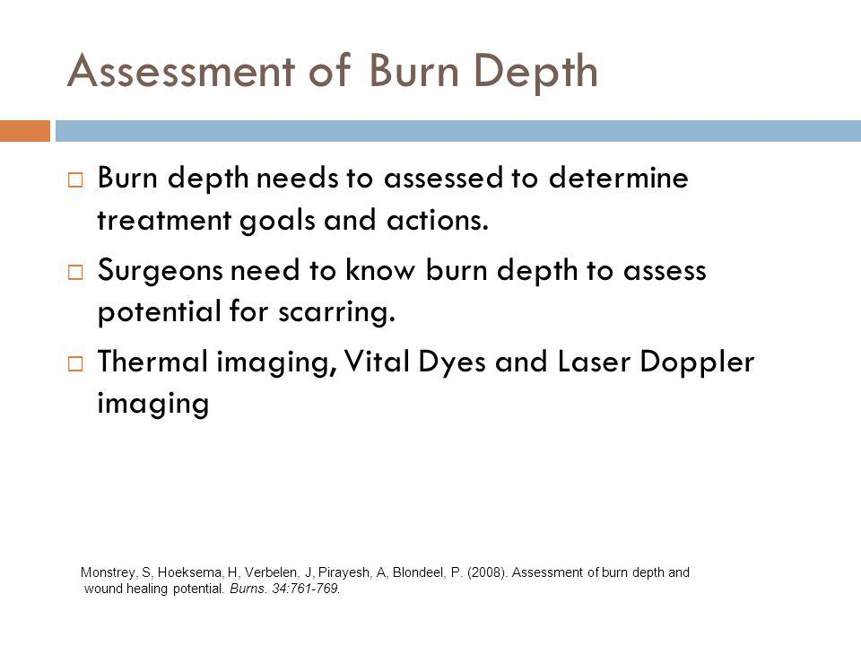 Assessment of Burn Depth