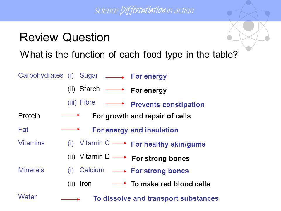 Review Question What is the function of each food type in the table