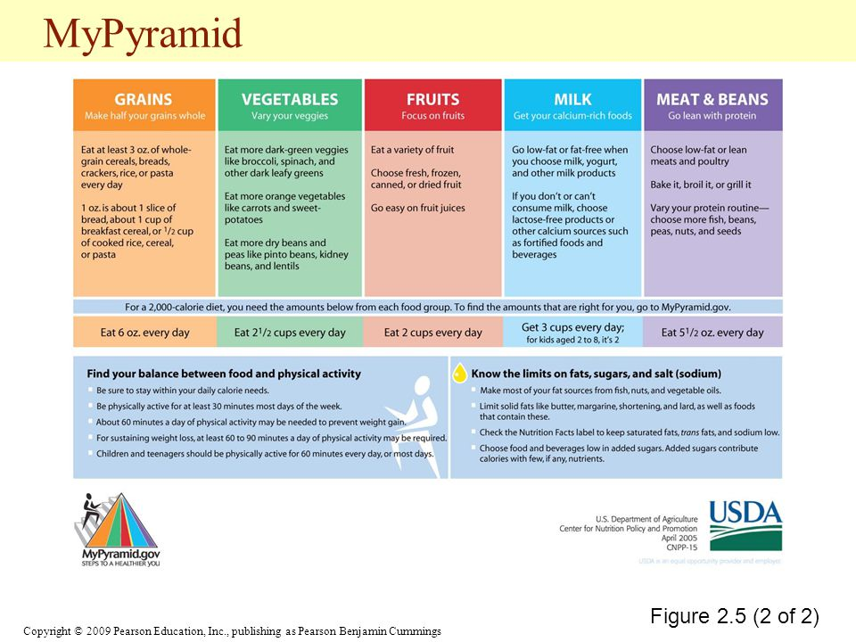 MyPyramid Figure 2.5 (2 of 2)
